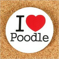 I LOVE POODLE 缶バッジ プードル 雑貨 アクセサリー グッズ 犬 ドッグ
