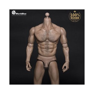【WorldBox】AT-012 Thick Chest and Broad Shoulder 1/6スケール 男性ボディ素体