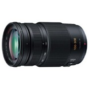 パナソニック LUMIXGVARIO100−300mm/F4.0−5.6/MEGAO.I.S. H‐FS100300【送料無料】