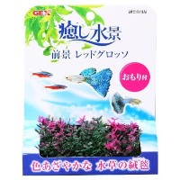 GEX 癒し水景 前景レッドグロッソ【熱帯魚 アクア用品 ジェックス GEX】
