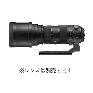 【送料無料】SIGMA TRIPOD SOCKET TS-81 JAN末番1469
