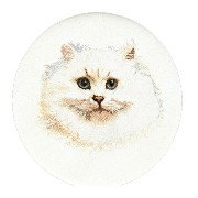 Thea Gouverneur クロスステッチ刺繍キット No.1045 「White Persian Cat」(白いペルシャ猫) オランダ テア・グーヴェルヌール 【取り寄せ/納期40〜80日程度】