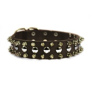 Dean & Tyler Golden Spike Dog Collar with Spikes/Studs/Brass Buckle 22 by 1-1/2-Inch Brown