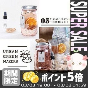 【あす楽対応】 [URBAN GREEN MAKERS] TERRARIUM KIT 05.VINTAGE GLASS JAR TERRARIUM KIT PINK【アーバングリーンメーカーズ...