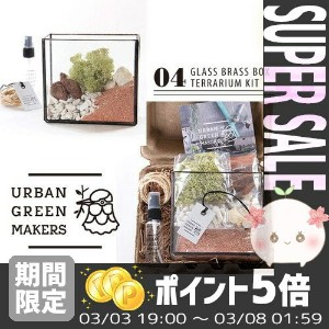 【送料無料】 【あす楽対応】 [URBAN GREEN MAKERS] TERRARIUM KIT 04.GLASS BRASS BOX TERRARIUM KIT【アーバングリーンメーカーズ...