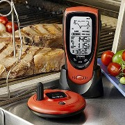 NEW Talking Wireless BBQ/Oven Thermometer (Audio/Video/Electronics) by Oregon Scientific [並行輸入品]