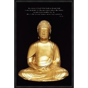 Buddha - Live In The Present Poster - 91.5x61cm