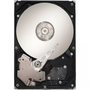 Seagate 3.5インチ内蔵HDD 250GB 7200rpm SATA 6.0Gb/s 8MB ST3250312AS