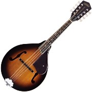 GRETSCH G9320 New Yorker Deluxe Mandolin エレクトリックマンドリン