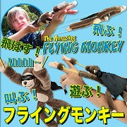 Racing Flying Monkeys (Set of two) by Dream Internet Ltd [並行輸入品]
