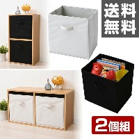 【5%OFF】 東洋ケース 収納ボックス 2個セット A4対応 A4カラーボックス対応 カラーボックス インナーボックス 2個組 【送料無料】