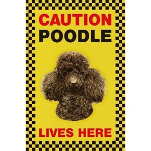 CAUTION POODLE LIVES HERE サインボート:プードル 写真 画像 英語 看板 Made in U.K [並行輸入品]