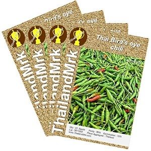 唐辛子 Thai Bird's eye chili Capsicum annuum 4 Bulk ThailandMrk