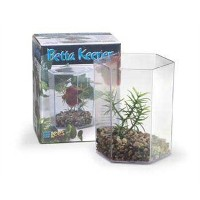 Lee's Betta Keeper with Lid, Gravel and Plant - Small by Lee