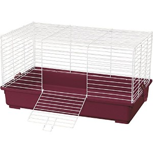Kaytee My First Home & Fiesta Guinea Pig Complete Kit Bedding Food Dish Cage
