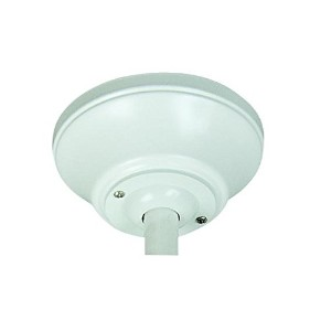 Craftmade ASAD-W Anti-Sway Ceiling Fan Mount Adapter, White by Craftmade