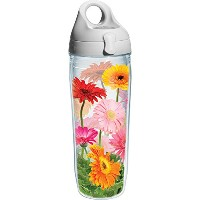 Tervis Gerba Daisy Water Bottle with Lid, 24 oz, Clear by Tervis