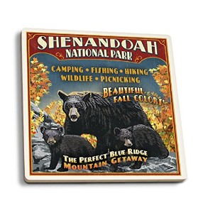 Shenandoah National Park Virginia – Bear AndカブスVintage Sign 4 Coaster Set LANT-42286-CT