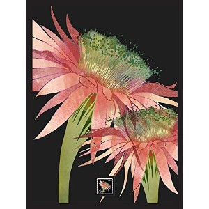 Imperial Mint 071302SH04 Triangle Cactus Framed Wall Art with Postage Stamp [並行輸入品]