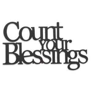 1 X Demdaco Embellish Your Story Count Your Blessings Phrase Magnet by Embellish Your Story