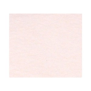 Carpet to Rug Non Slip Pad 56-Inch by 90-Inch by None