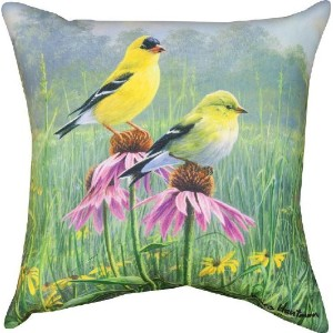 Manual Indoor/Outdoor Pillow, Yellow Finch Field X James Hautman, 18-Inch by Manual Woodworker ...