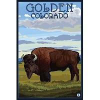 Golden, Colorado - Bison Scene (16x24 Giclee Gallery Print, Wall Decor Travel Poster) by Lantern...
