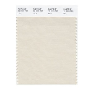 PANTONE SMART 13-0905X Color Swatch Card, Birch [並行輸入品]