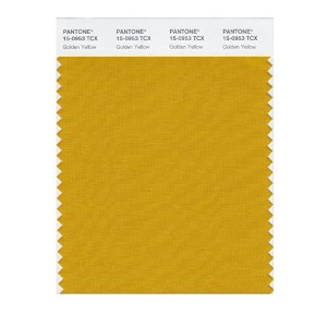 PANTONE SMART 15-0953X Color Swatch Card, Golden Yellow [並行輸入品]