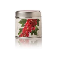 Rosy Rings Red Currant & Cranberry Tin Scented Candles [並行輸入品]