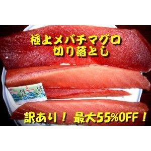 """TBSイブニング5が当店の""""訳ありマグロ""""を紹介!極上メバチマグロ1kg前後"""