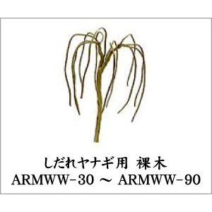 ARMWW-90 ヤナギ裸木2本入り