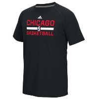 Chicago Bulls adidas 2016 On-Court climalite Ultimate T-Shirt メンズ Black NBA Tシャツ シカゴ ブルズ