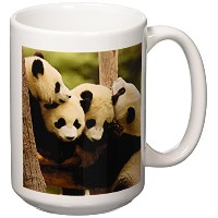 3drose Danita Delimont – Bears – Giant Panda Bears , Wolong中国Conservation、china-as07 pox0365 –...