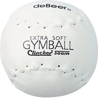 Worth xf12Debeer 12-inch TRUTECHレザーカバーGymball Stampedホワイトボール