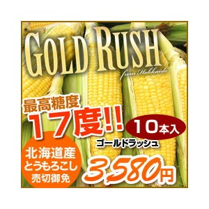 【送料無料】H29年度とうもろこし「ゴールドラッシュ」 10本セット(約4.3kg 産地直送 着日指定不可 8月中旬より発送開始予定)(dk-4)