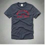 abercrombie kids 半袖 Tシャツ ボーイズ アバクロキッズ 正規品 heritage logo graphic tee