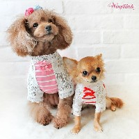 【WOOFLINK】 (ウーフリンク) WOOFLINK DAY DATE【犬服 小型犬 レーススリーブTEE ボーダー 長袖 カットソー】