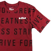 NIKE LeBron Strive All Over T-Shirt メンズ DRY-FIT Tシャツ Crimson/Black/White ナイキ レブロン・ジェームス