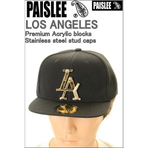 PAISLEE BRAND CAP USA VINTAGE FRAMES COMPANY USA PAISLEE BRAND LOS ANGELES GOLD【ペーズリー ペイズリー 】...