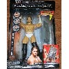 WWE Jakks Pacific Wrestling DELUXE Aggression Series 8 アクション Figure CM Punk (海外取寄せ品)