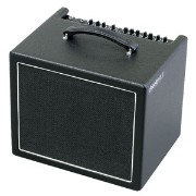 CHEEKY D.12V【税込】 AER 200W ギターアンプ Two channel electric guitar amplifier [CHEEKYD12V]【返品種別A】【送料無料】...