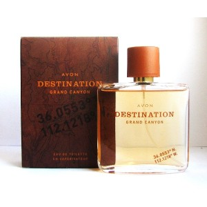 AVON Destination Grand Canyon For Him Eau de Toilette 75ml