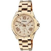 Fossil AM4511 Womens Cecile Wrist Watches [Watch] Fossil