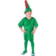 Peter Pan Deluxe (L). Male To fit child of height 134cm 146cm - Green