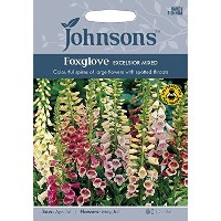 Johnsons Seeds Foxglove Excelsior Mixed フォックスグローブ(ジギタリス)・エクセルシオール・ミックス