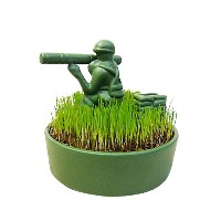 TOY SOLDIER トイソルジャー 栽培キット 観葉植物