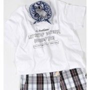 SHIPS Days: プリント TEE◆【シップス/SHIPS Tシャツ・カットソー】