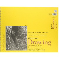 "Strathmore Drawing Paper Pad 14""X17""-70lb 50 Sheets (並行輸入品)"