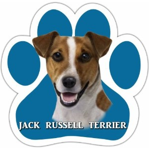 Jack Russell Car Magnet With Unique Paw Shaped Design Measures 5.2 by 5.2 Inches Covered In High...